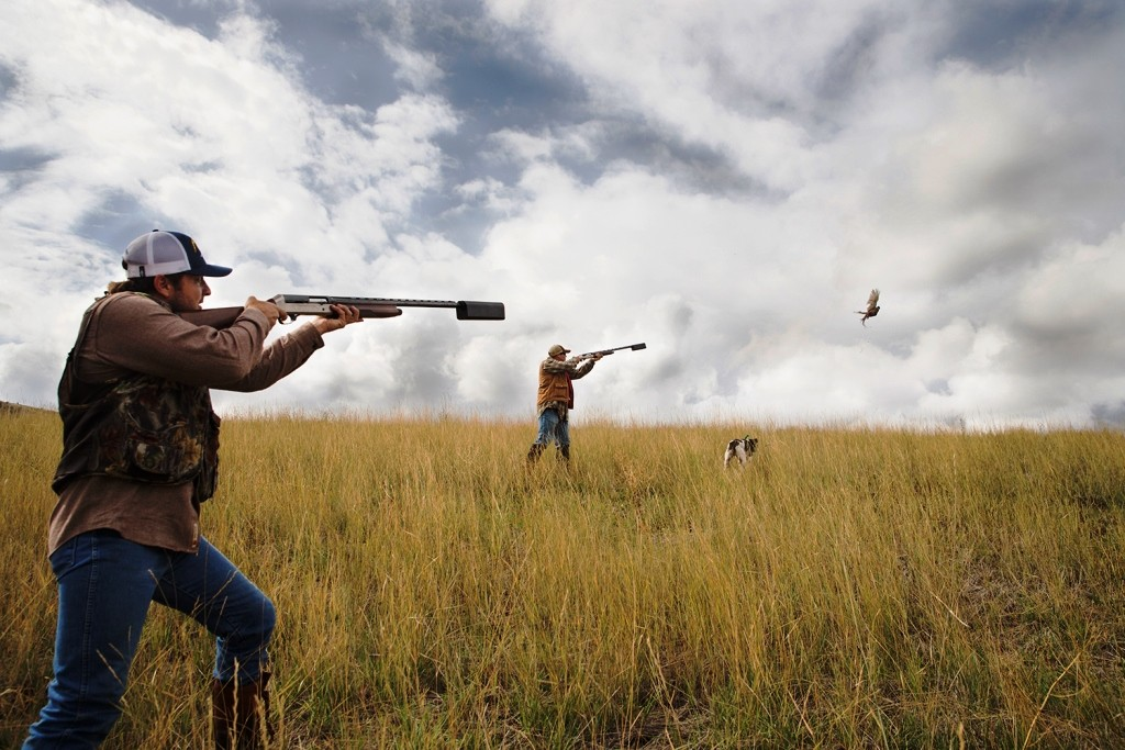 Pheasant Hunting with a Salvo-12 suppressor form Silencerco